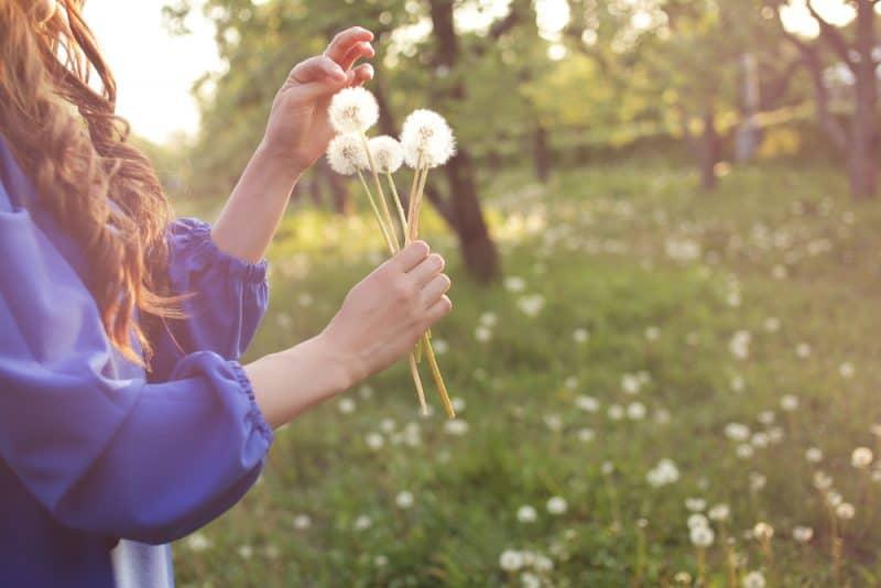 kvinna som blåser maskros i vårträdgård