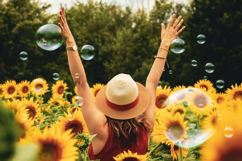 en kvinna i ett solrosfält