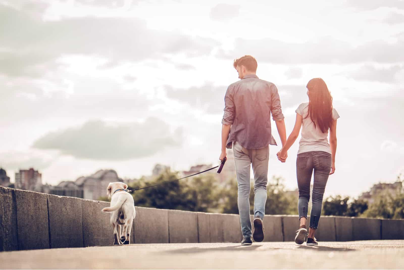 par som håller händer som går