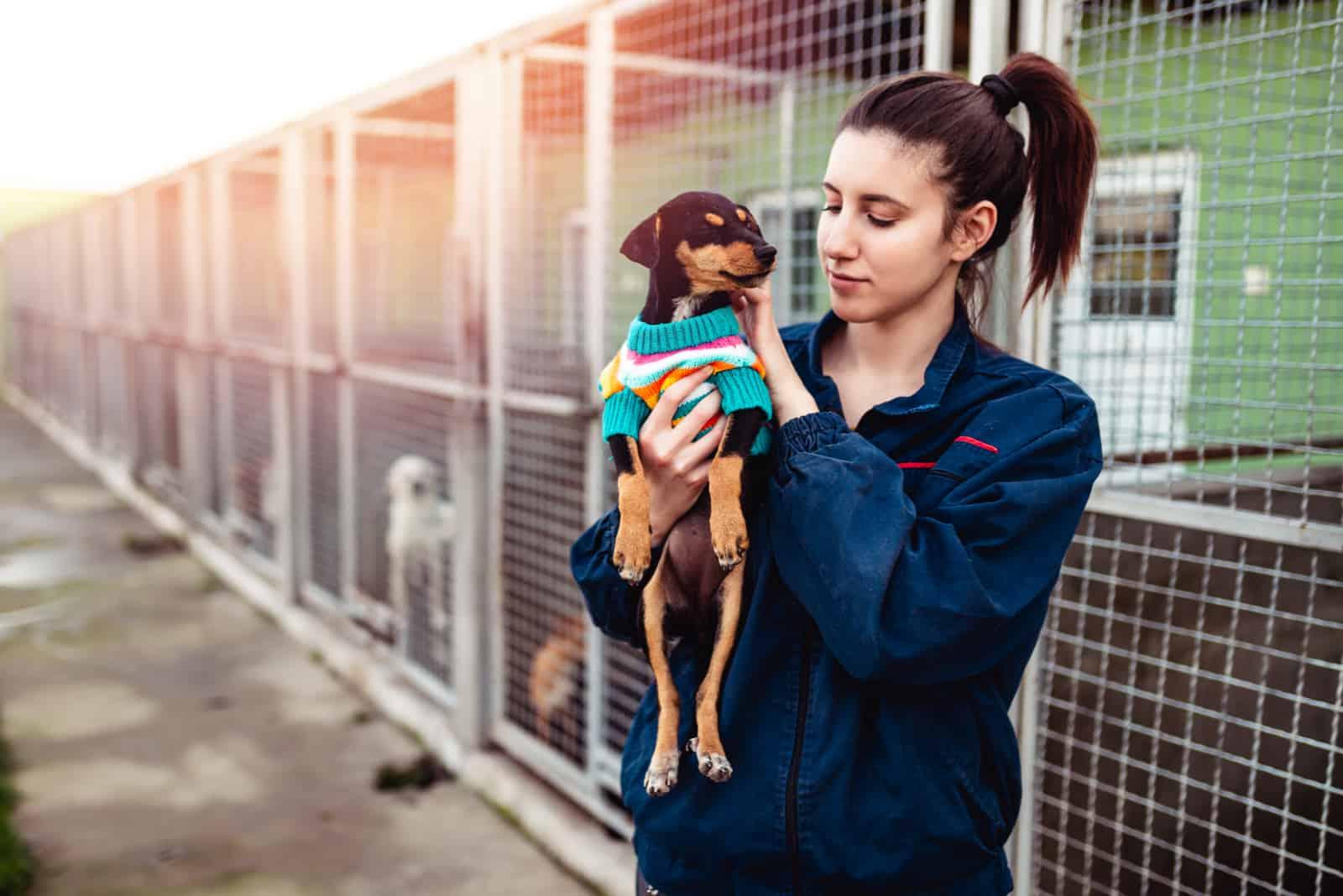 kvinna i hundskydd